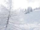Skilager_2018(7)
